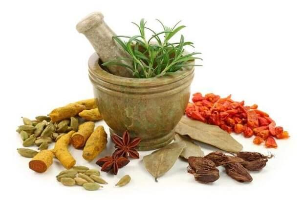 Гипотиреоз: как подобрать лечебные травы