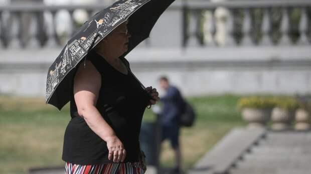 МЧС предупредило жителей столичного региона о дожде с грозой и градом