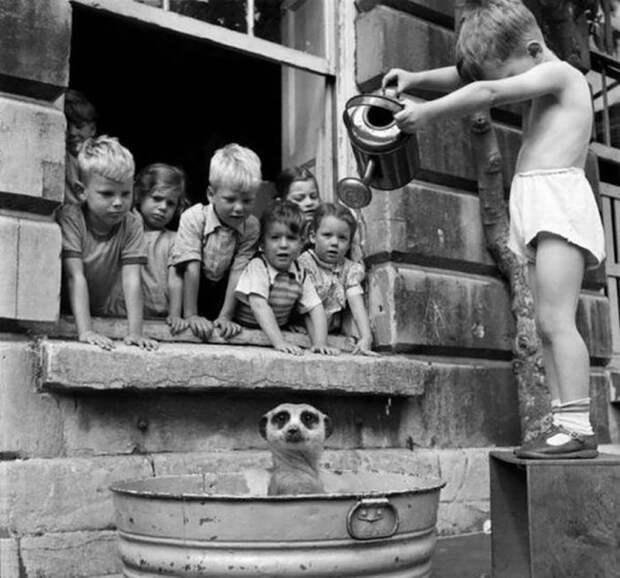 Исторические снимки, которые мало кому попадались на глаза