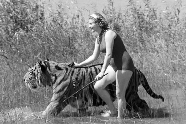 Животные, которые снимались в фильмах. Как сложилась их жизнь?