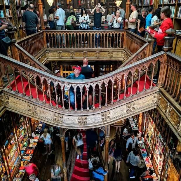 Вот как выглядит книжный магазин в Португалии, который стал прообразом Хогвартса