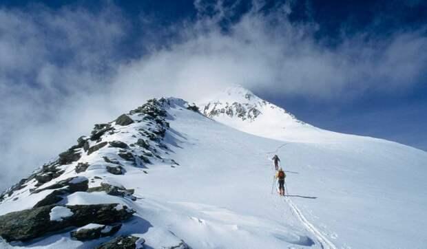Инцидент с пропавшими на перевале Дятлова туристами из Москвы прояснили