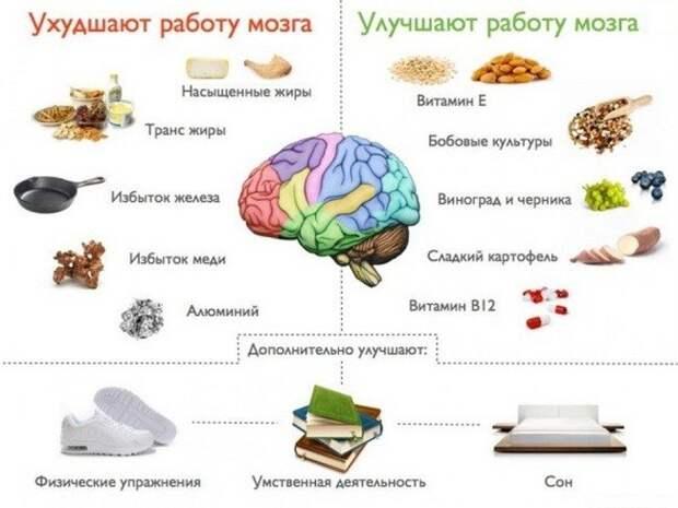 Лучшие продукты для ума