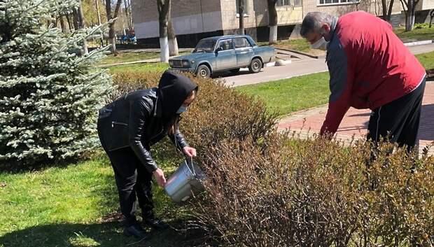 У памятника «Возвращение с Победой» в Подольске высадили кустарник