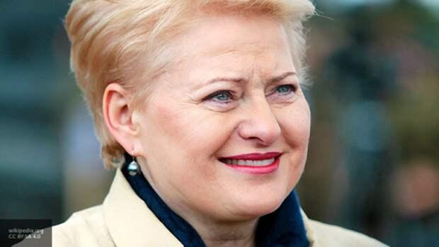 «Слепая ярость» Прибалтики: Литва хочет окончательно попрощаться с Россией