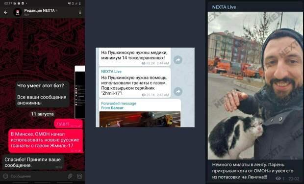 Революция фейков. Кто и почему распространяет враньё о беспорядках в Белоруссии?