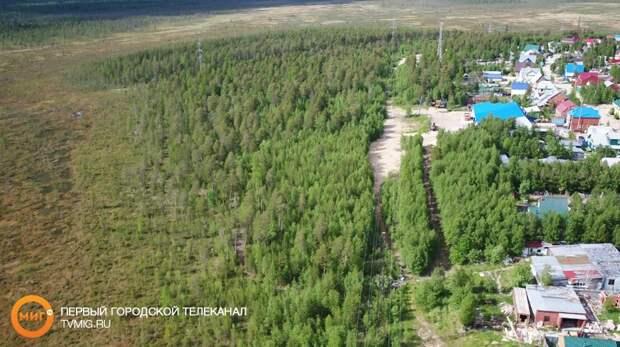 На Ямале начали бесплатно выдавать участки земли