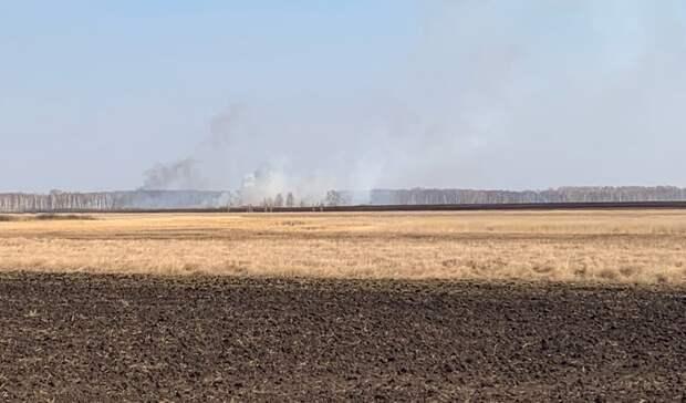 Под Тюменью вновь горит лес. Отмечается два очага возгорания