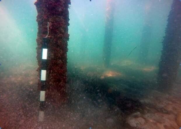 Фото: предоставлены Черноморским центром подводных исследований.