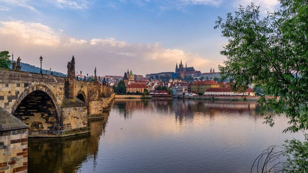 Президент Чехии назвал премьера Бабиша возможным преемником