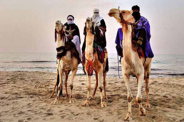 libyande Ливийская пустыня Башара Шглила