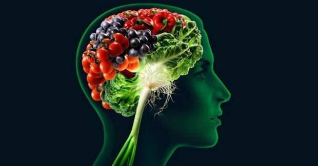 Пища для стимулирования памяти и улучшения здоровья мозга