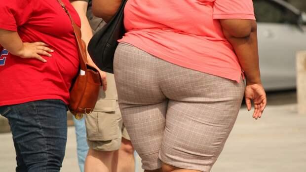 Ученые открыли безопасный способ борьбы с ожирением