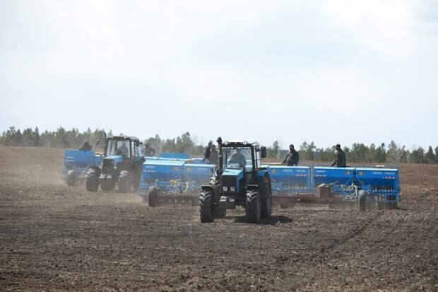 К весенним полевым работам приступили 18 районов Иркутской области