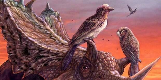 Прощание с динозаврами антропология, динозавры, естественный отбор, кошки, человек, эволюция
