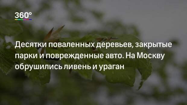 Десятки поваленных деревьев, закрытые парки и поврежденные авто. На Москву обрушились ливень и ураган