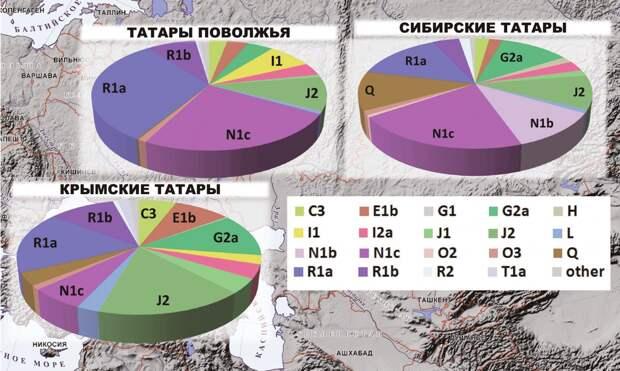 Татары Евразии: своеобразие генофондов крымских, поволжских и сибирских татар