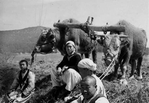 Редкие фотографии Северной Кореи начала 20-го века