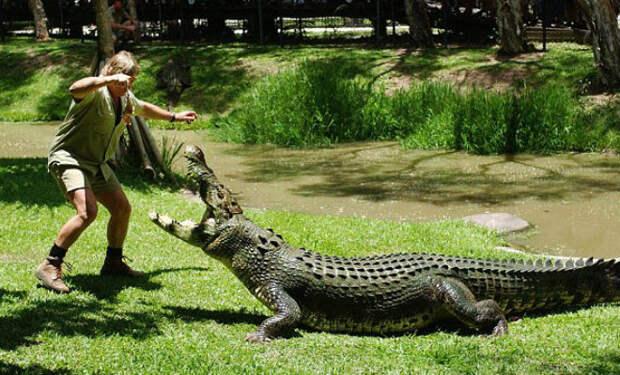Рыбак задремал, а когда проснулся обнаружил себя с крокодилом наедине