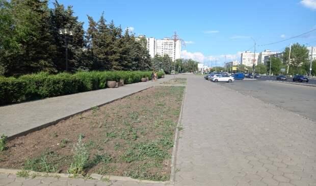 ВОренбурге всквере упамятника Гагарину массово гибнут деревья