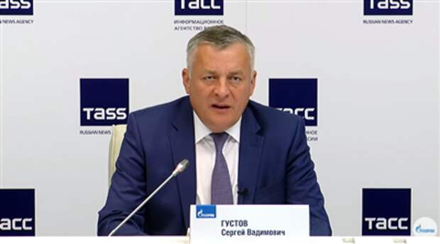"""""""Газпром"""" должен газифицировать более 1,5 млн домовладений до 1 января 2023 года"""