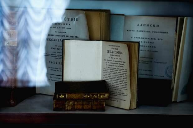 Публицист указал на суть книжного кризиса в России