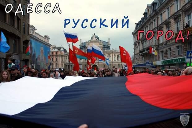 Россия окажет поддержку своим гражданам по всей Украине – депутат Госдумы