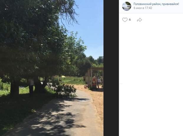 В парке «Михалково» проходит вырубка аварийных веток