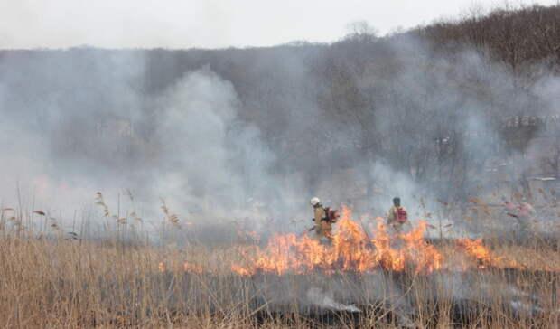 Внимание! Четвертый класс пожарной опасности ожидается вНижегородской области