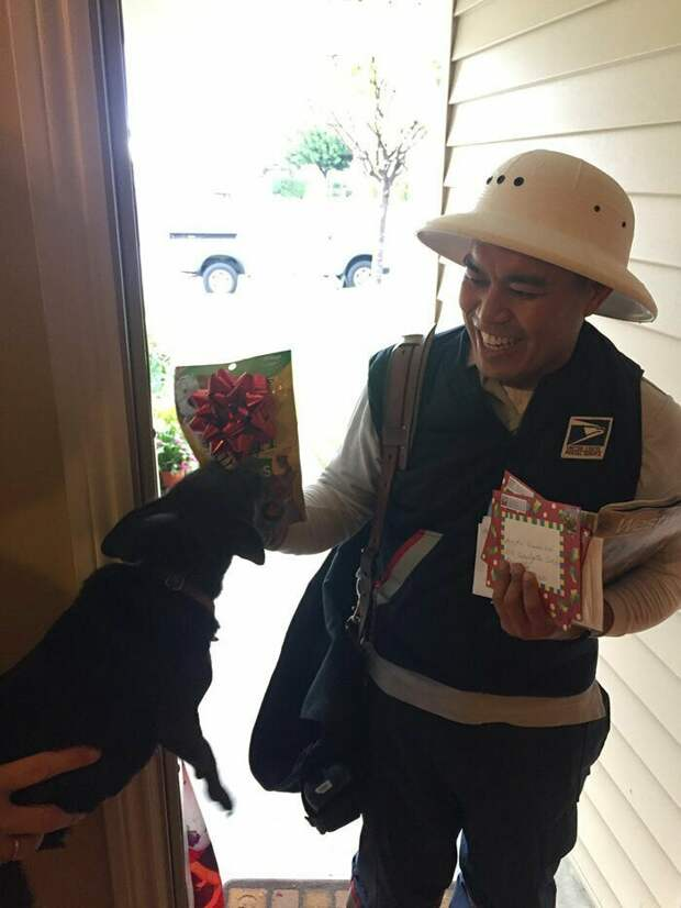 Служба доставки и почтальоны, с которыми не заскучаешь