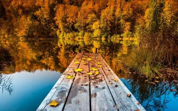 Красивое осеннее настроение: «И с каждой осенью я расцветаю вновь...»