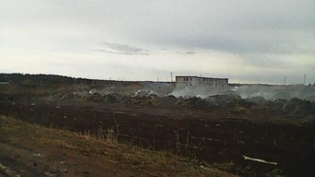 Снимали ролик для TikTok: в Прикамье девочки подожгли 195 тонн соломы на ферме