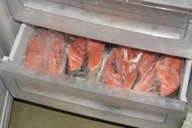 Замороженная рыба хранится практически год / Фото: vestnikao.ru