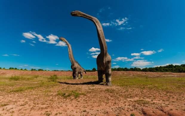 Археологи обнаружили останки динозавра в Чили: сколько лет назад он обитал на Земле