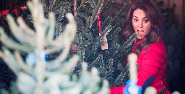 Герцогиня Кэтрин боялась встречать Рождество с королевой Елизаветой II