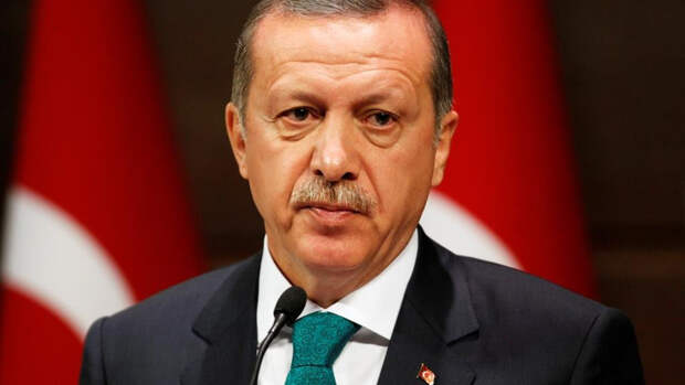 Эрдоган предложил Путину разрабатывать нефть насеверо-востоке Сирии