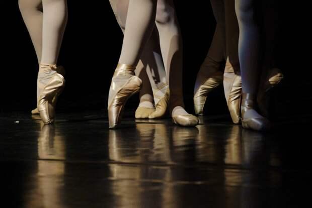 Главная выставка страны примет фестиваль «Мировые балетные каникулы»