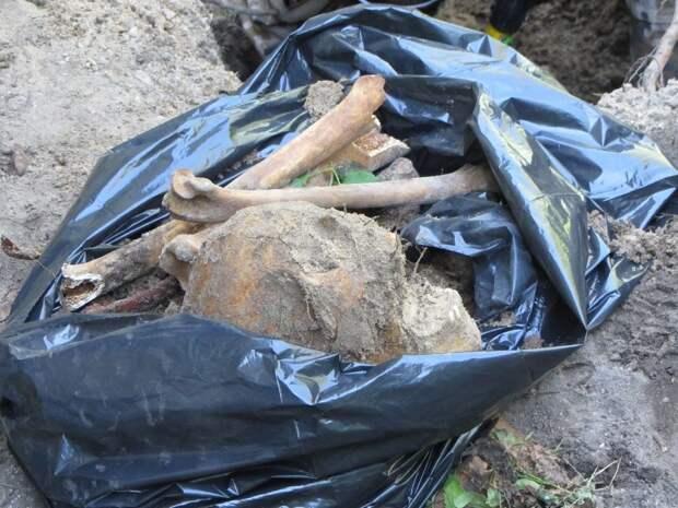 Под Калининградом нашли около 300 мешков предположительно с человеческими костями