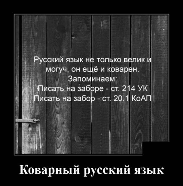 Демотиватор про коварный русский язык