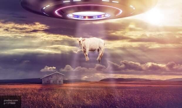 Женщина сумела снять похожий на диско-шар НЛО в аномальной зоне Пермского края