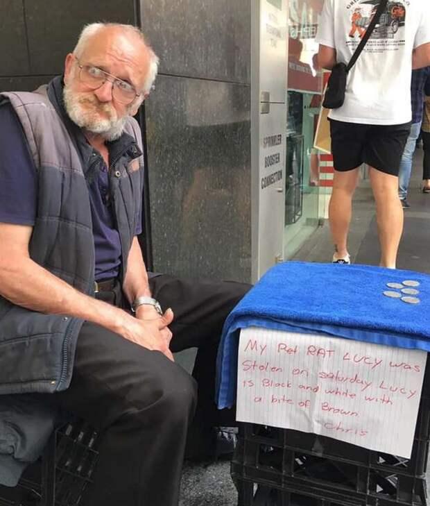 История бездомного Криса и крысы Люси : продолжение