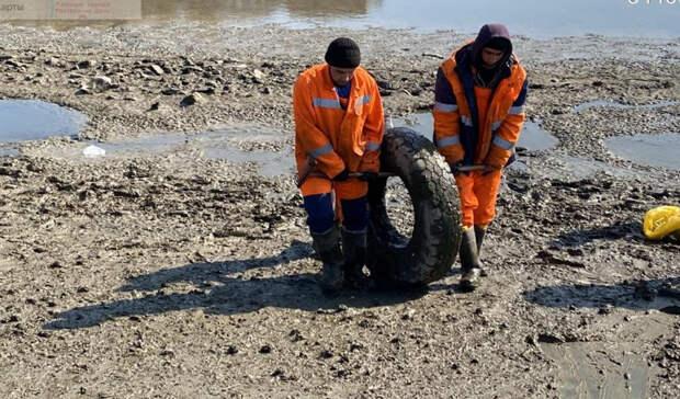 Больше 130 тонн мусора вывезли с Северного водохранилища