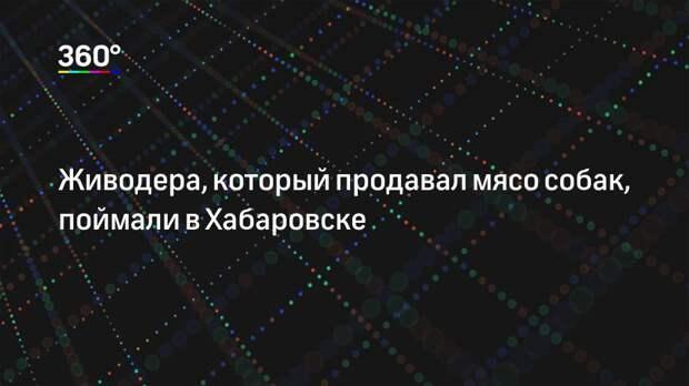 Живодера, который продавал мясо собак, поймали в Хабаровске