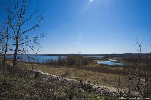 Что случилось с прудом-охладителем в Чернобыле.