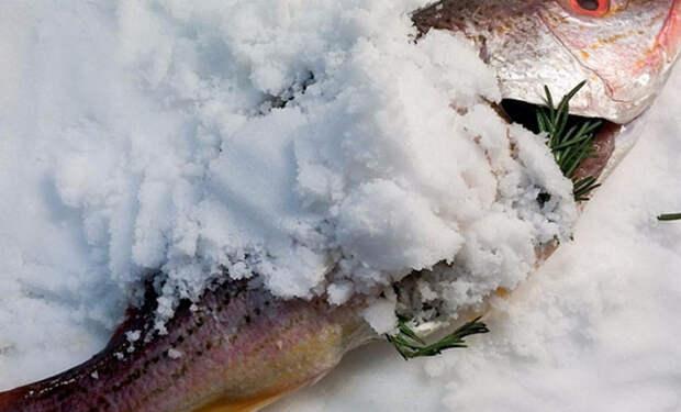 Засыпаем рыбу солью и ставим в духовку