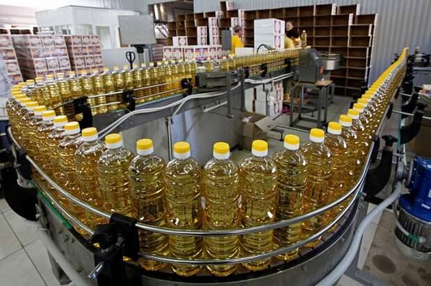 Экспорт кубанских продуктов: что и куда поставляет регион