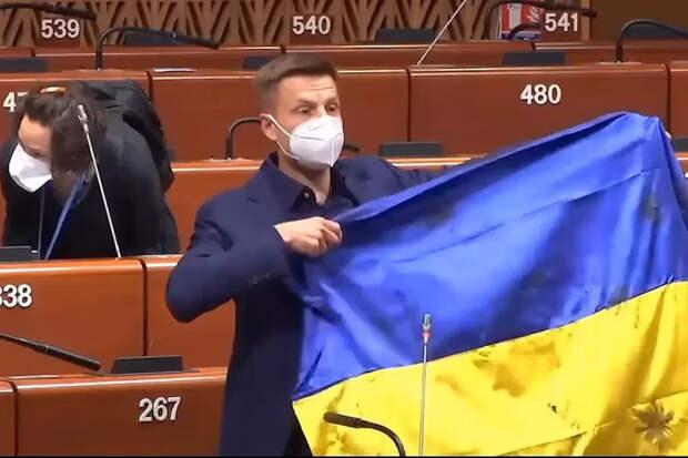 «Дали пинка, чтобы место своё знали»: в ПАСЕ извинились перед Россией за Украину