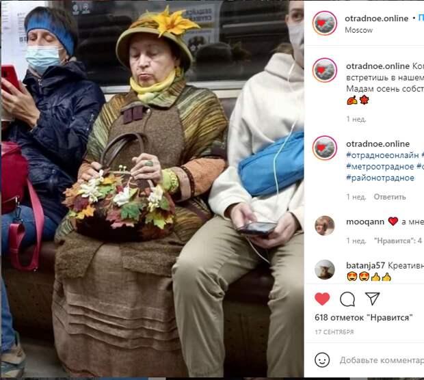 Фото дня: в Отрадное «приехала» осень