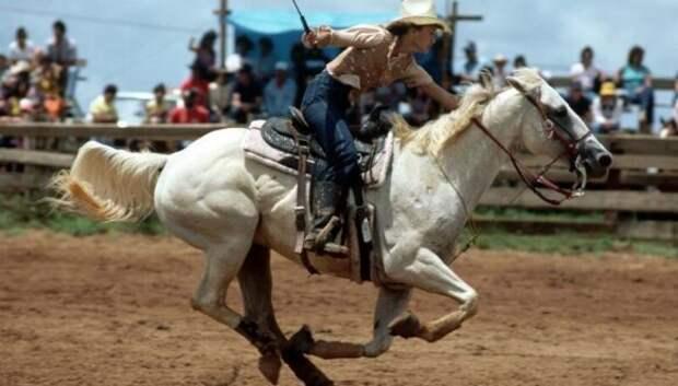 История первых техасских женщин-ковбоев
