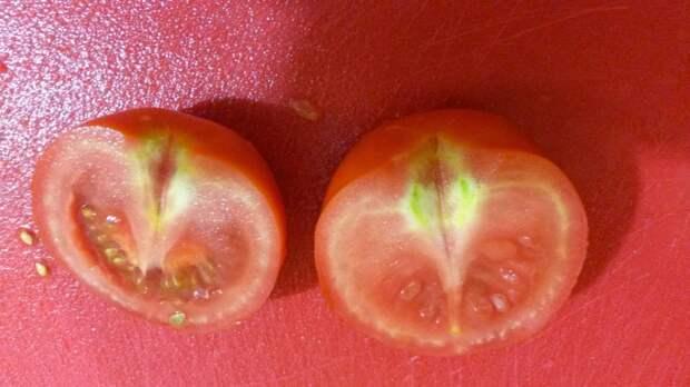 Шакшука (яичница с помидорами и болгарским перцем)